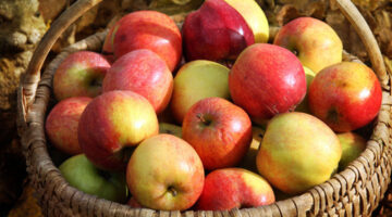 Fall Apple Harvest Recipe Ideas: Crock Pot Apple Butter, Hot Apple Cider & More