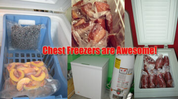 Chest Freezers Save Homeowners Lots Of Money On Groceries