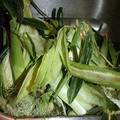 Corn husks from corn on the cob.
