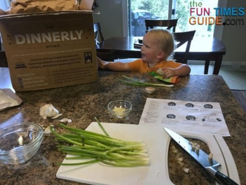 My son was fascinated with the new Dinnerly box that arrived.