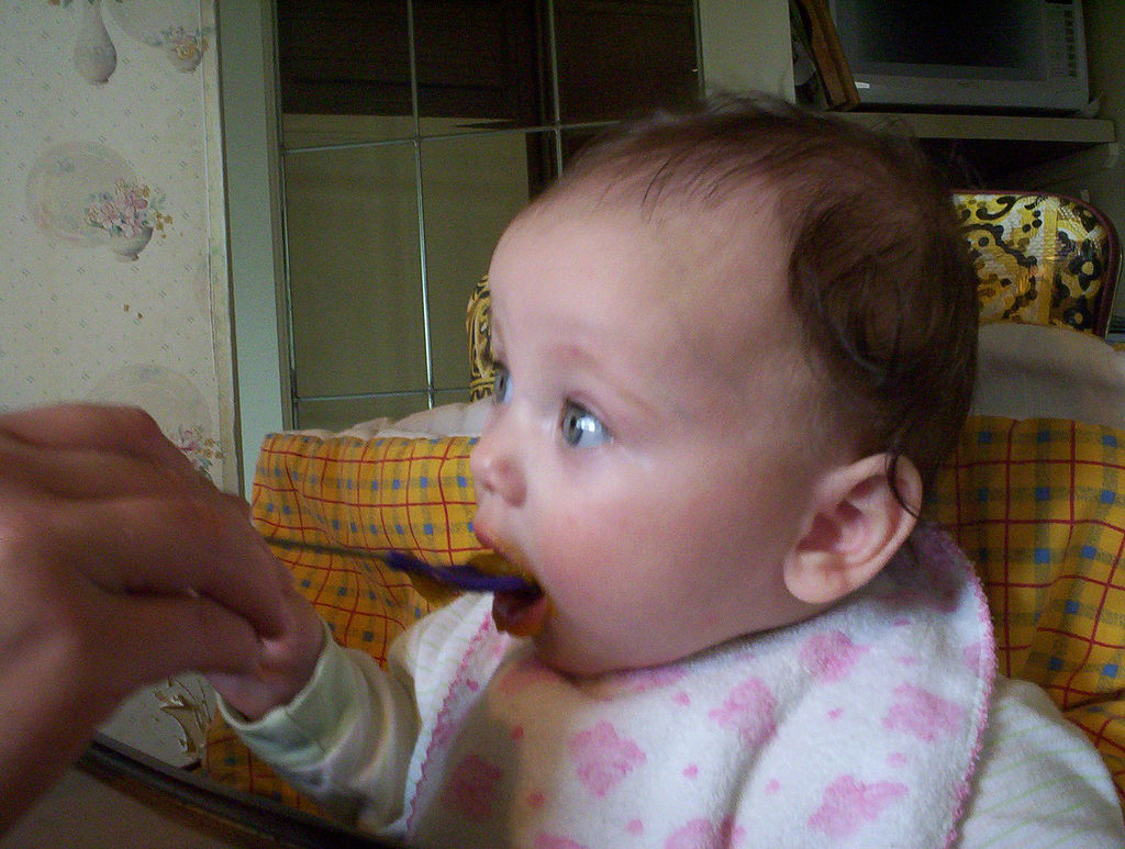 10 Tips For Making Your Own Baby Food The Food And